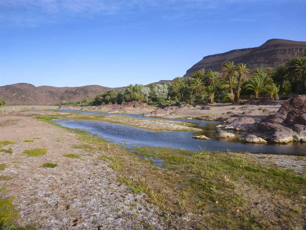 Grand Tour du Sud Marocain (7 jours)
