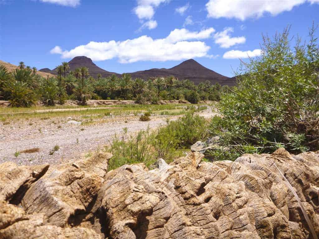 Cols du Haut Atlas, Erg Chagaga & dunes de l'Erg Chebbi (7 jours)