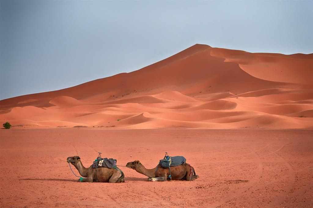Dadesschluchten, herrliche Erg Chebbidünen, Agadir (4 Tage)