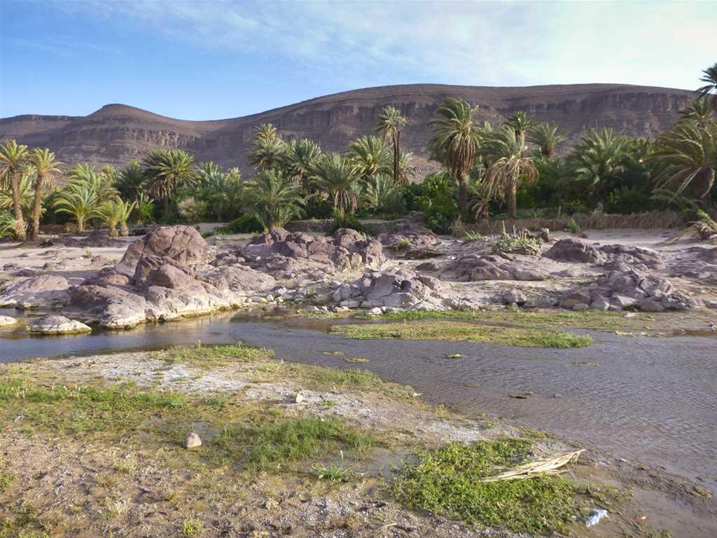 Herrlichkeit in den Chagagadünen und im Hohen Atlas (6 Tage)