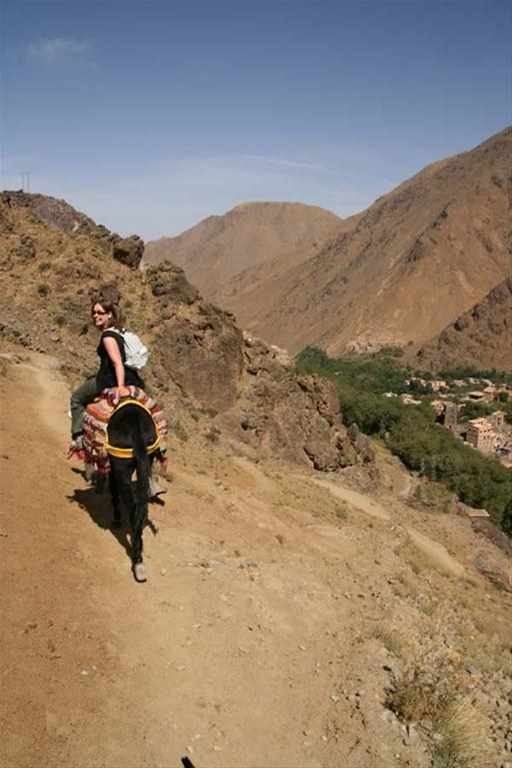 Dades: mules, Merzouga: Camels – 8 days
