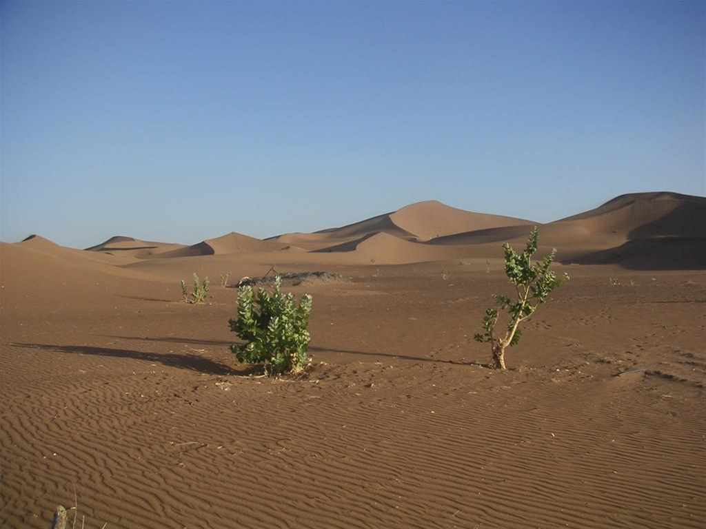 Majestic southern Chegaga dunes – 3 days