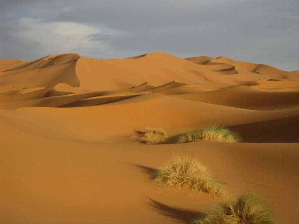 erg-lihoudi-dunes-Sahara-desert-trip.jgp