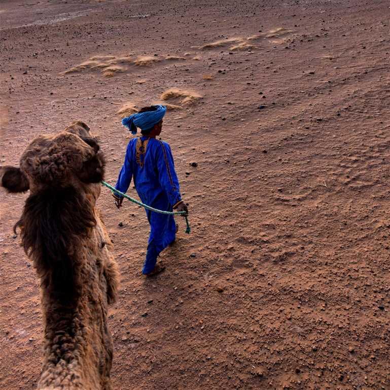 Camel_man_desert_dunes.jpg
