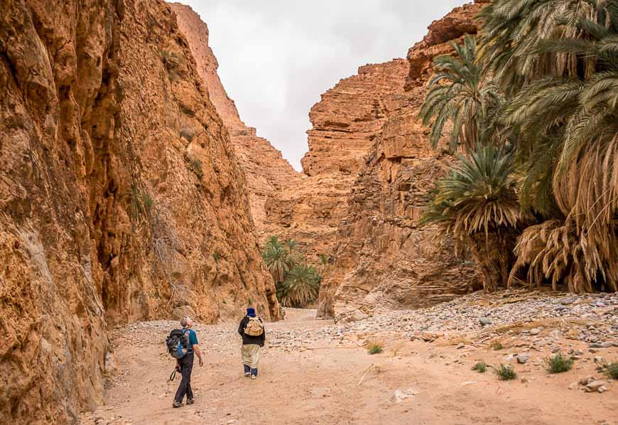 Dades: mules, Merzouga: Camels (8 days)