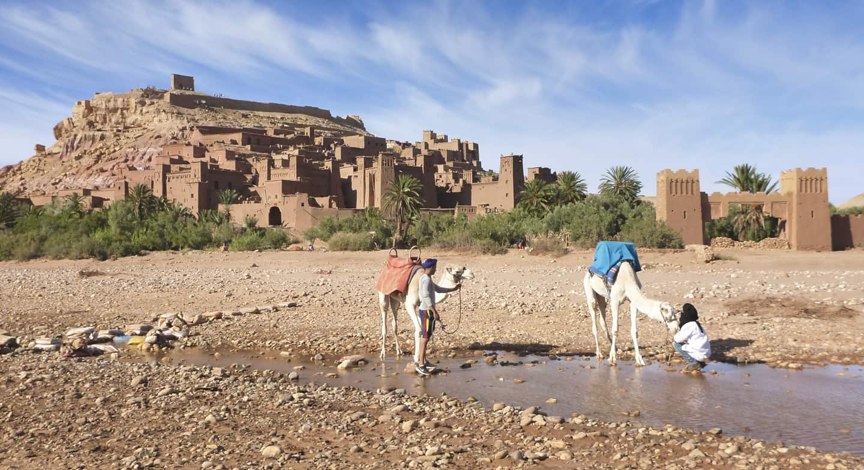 Ait-ben-Haddou-Ouarzazate-Malian-camels.jpg