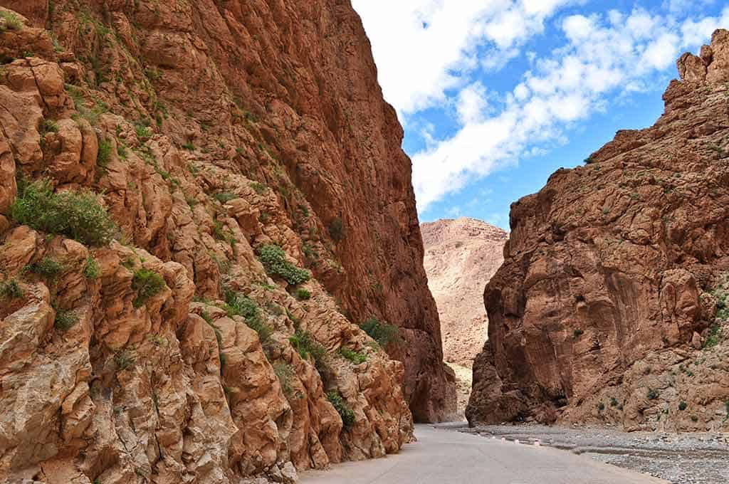 Skoura Oasis, Rose Valley and Dades Gorge (1 day trip)