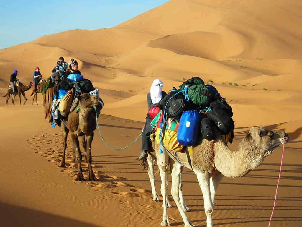 Saharan Adventure (7 days)