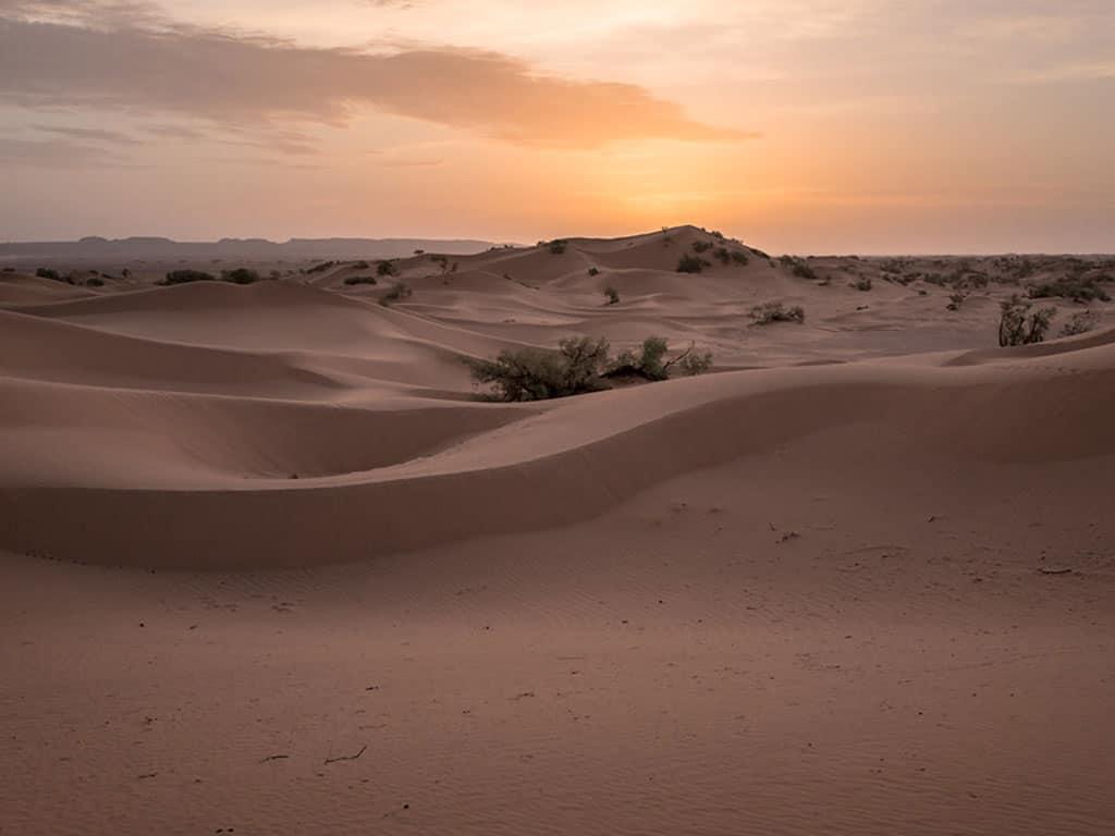 Little Majesty Zagora Desert and Dunes Tour (2 days)