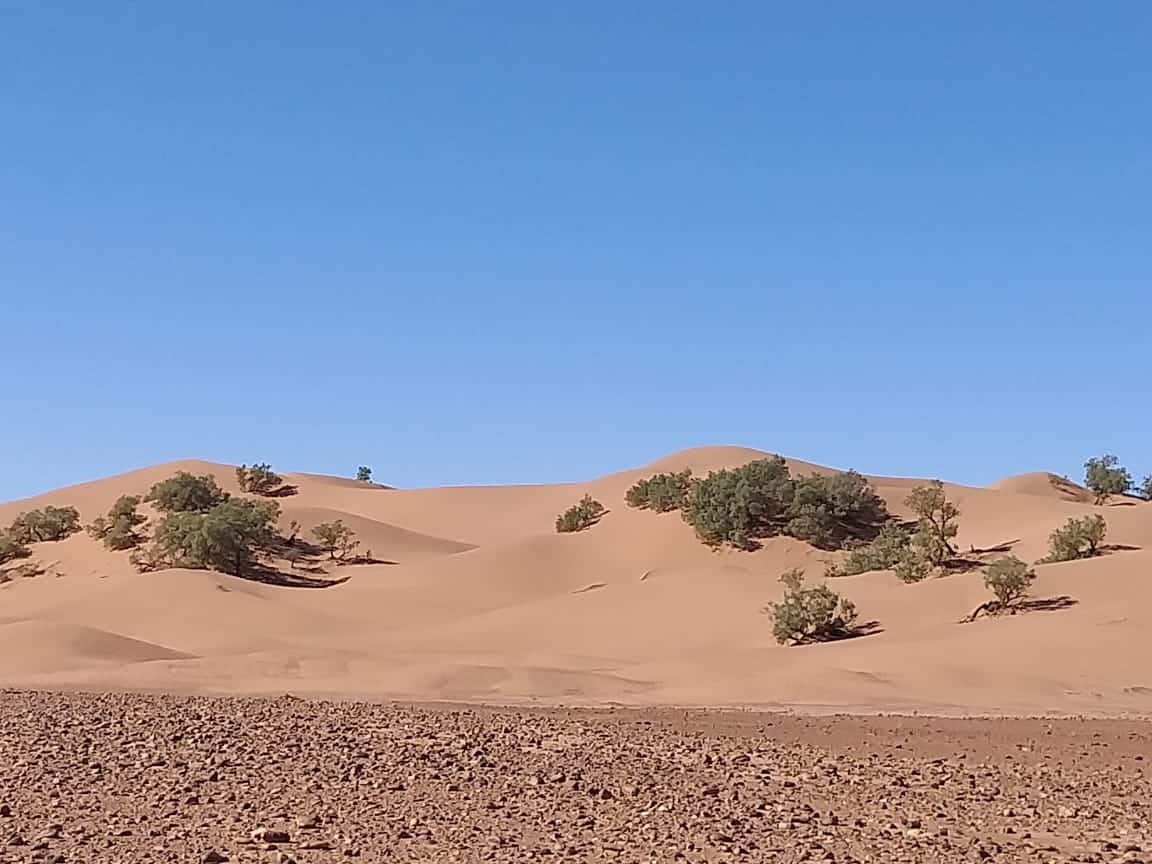 Dra'a Valley, Zagora, Erg Lihoudi dunes, Mhamid (2 days)