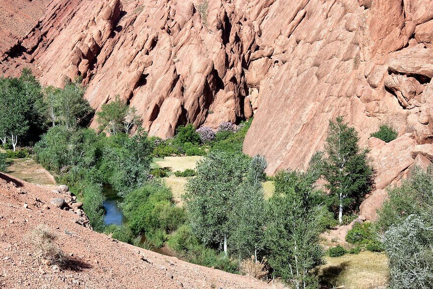 Skoura, Rose Valley, Dades gorges – 1 day